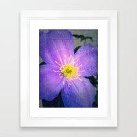 FLOWER N71 Framed Art Print