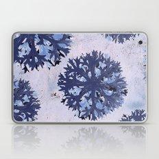Tumbleweed Laptop & iPad Skin