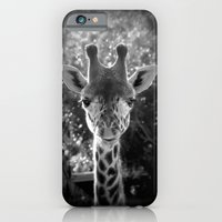 charming giraffe iPhone 6 Slim Case