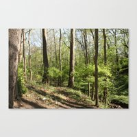 Another trail leading nowhere, including litter this time Canvas Print