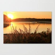 Summer Daize Canvas Print