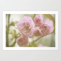 So Pretty In Pink  Art Print