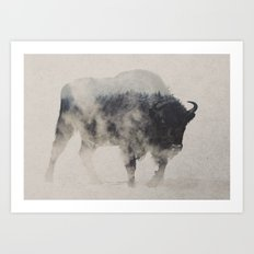 Bison In The Fog Art Print