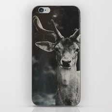 Oh Deer II iPhone & iPod Skin