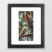 Lolita's Cardinals Framed Art Print