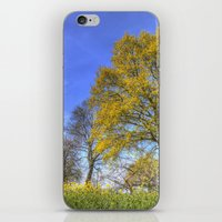 English Summertime Farm iPhone & iPod Skin