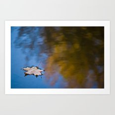 Lonely Reflection Art Print