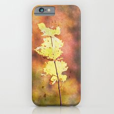 Seasonal Closeup - Autumn iPhone 6 Slim Case