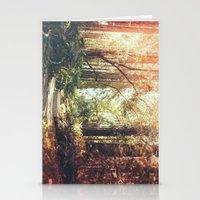 Beautiful California Redwoods Stationery Cards