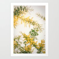 Wild Boughs Art Print