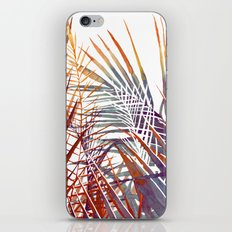 Arecaceae - household jungle #4 iPhone & iPod Skin