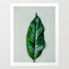 Green Leaf 1 Art Print