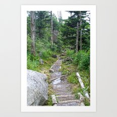 Color - Old Mountain Path Art Print