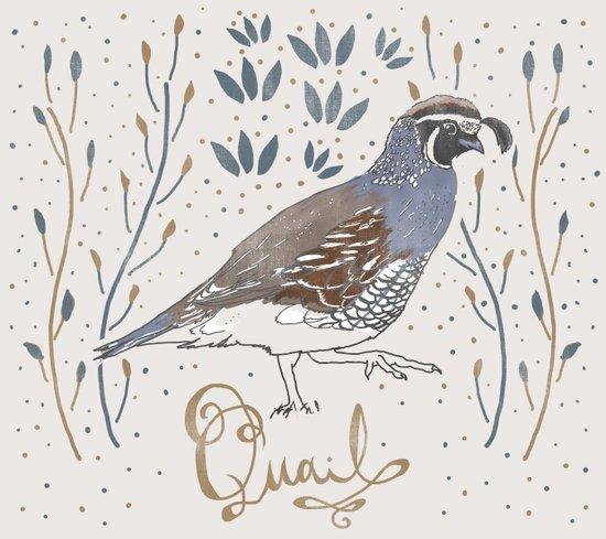Quail Art Print