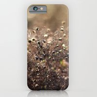 Autumn Morning iPhone 6 Slim Case