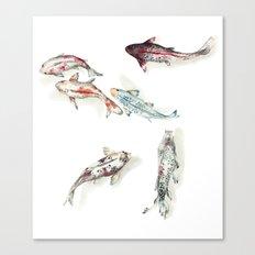 Koi Fish Watercolour Canvas Print