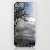 Winter In Spring iPhone 6 Slim Case