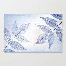 purple fall Canvas Print