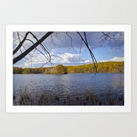 Hall Lake in Autumn No 0071 Art Print