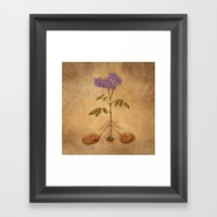 Anatomy Of A Potato Plan… Framed Art Print