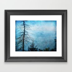 Clingman's Dome, Smoky Mountains Tennessee Framed Art Print