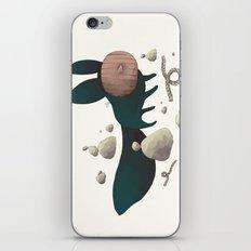 le fennec masqué  iPhone & iPod Skin