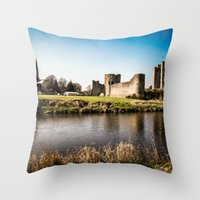 Defending The Realm Throw Pillow