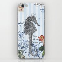 Seahorse In Blue iPhone & iPod Skin