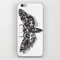 Moth iPhone & iPod Skin