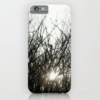 iPhone & iPod Case featuring Fade Away by Bella Blue Photography