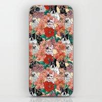 French Bullbloom iPhone & iPod Skin