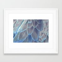 Silver Feathers Framed Art Print