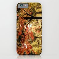 iPhone & iPod Case featuring Red Maple in Larz Anderson park. by LudaNayvelt