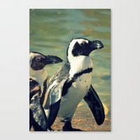 Beach Buddies Canvas Print