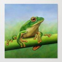 Moltrecht's Green Treefr… Canvas Print