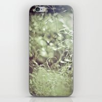 Scatter iPhone & iPod Skin