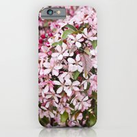 Apricot blossoms iPhone 6 Slim Case