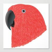 Eclectus [Female] Parrot Canvas Print