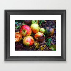 Apple of the Eye Framed Art Print