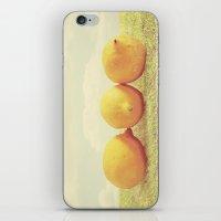Lemongrass iPhone & iPod Skin
