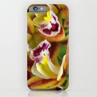 Three Orchids  iPhone 6 Slim Case