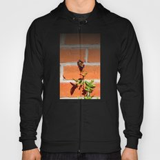 The poetry of ordinary things Hoody