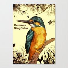Common Kingfisher Canvas Print