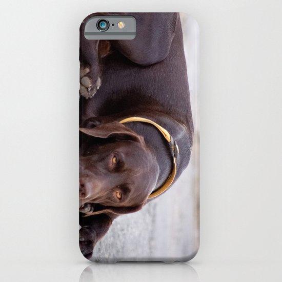 the hound dog iPhone & iPod Case