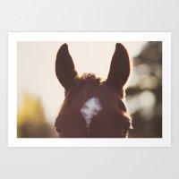 I'm all ears. Art Print