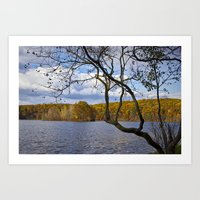 Hall Lake in Autumn No 0118 Art Print