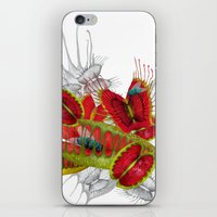 Beautiful And Deadly iPhone & iPod Skin