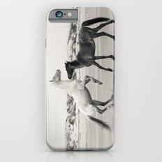 Wild Horses 5 - Black and White Slim Case iPhone 6s
