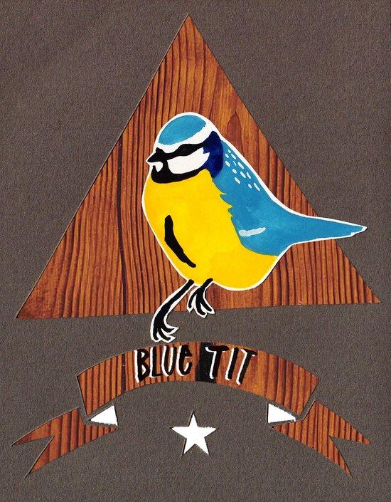 Blue tit! Art Print