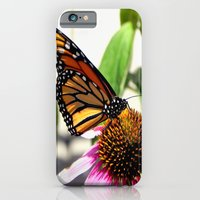 iPhone & iPod Case featuring Nature's Beauty by Dawn East Sider
